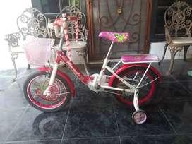 Sepeda anak murah-wimcycle strawberry