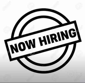 Urgent need For receptionist