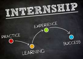 SEO Internship Available Female Candiate