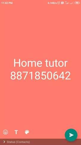 I am a home tutor