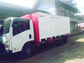 Bak truk full kayu baru