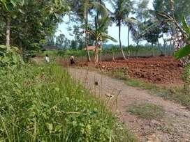 Tanah Murah Luas 1400 m2 di Sokawera Selatan Purwokerto