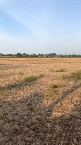 Tanah sawah dijual cepat. Rp. 285.000/meter