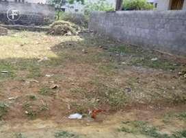 Open land at sithaphalmandi 130 sqr yrd