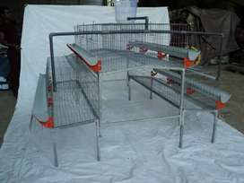Hi-tech steel chicken cage with nipple system