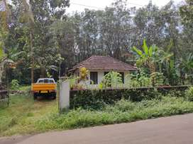 1.2 acre land 1.5km from karimkunnam,Tdpa, two sides tar road front.