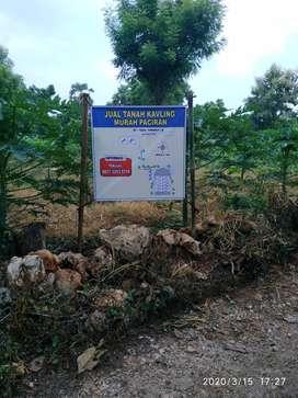 Jual Tanah Kavling Paciran - Lamongan