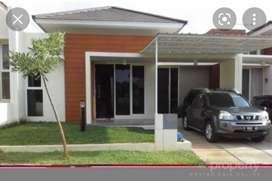 Disewakan : Rumah 1 Lantai di Ivy Park - BSB city