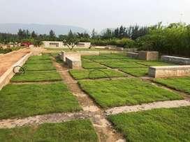 VUDA APPROVED GATED COMMUNITY PLOTS FOR SALE AT DUVVADA TO SABBAVARAM
