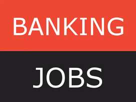 Urgent required freshers  in all bank