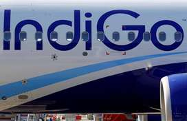INDIGO JOBS APLY NOW !!! JOB OFFER BY INDIGO AIRLINES HIGH PAID SALARY