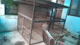 Cage for two dogs