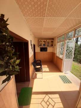 Peace Lodge - Murree - Room, Rooms, Hut, Guest House, Forest