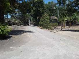 Tanah pekarangan dlm rengraod
