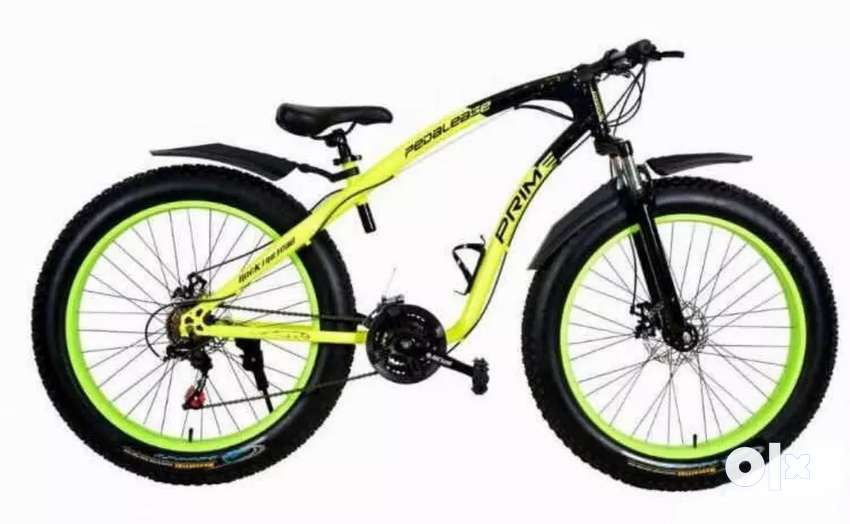 Brand new fat bike 0