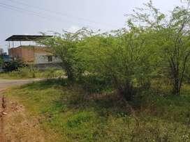 RESIDENTAL PLOT FOR SALE CHENGALPATTU ATHUR VILLAGE SRI BALAJI NAGAR