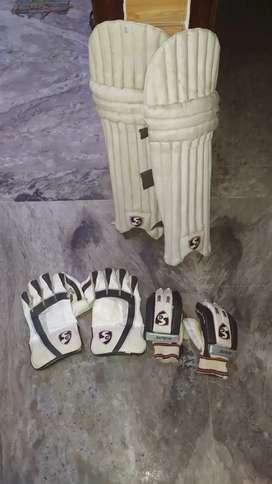 Sg pad ,batting gloves,keeing gloves