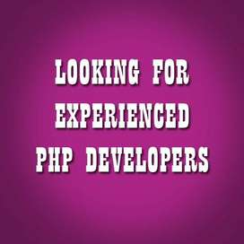 Looking for an experienced PHP+ WordPress Developer- Work on Contract