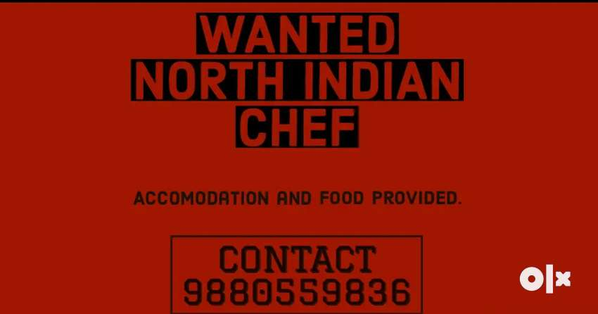 Looking for North Indian chef, Chinese chef and juice maker. 0