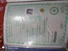 Diploma electrical