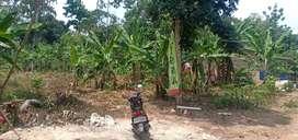 Tanah Murah 400rb/m² dijl Pulau singkep sukabumi
