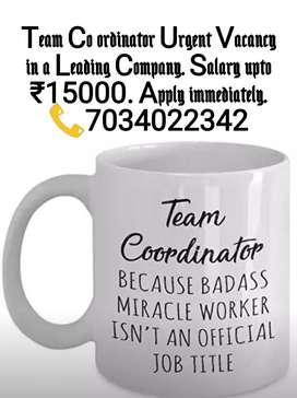 Team Co ordinator Vacancy in a leading Organisation.