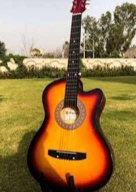 Type:Guitar...Brand:Casme acoustic guitar...model:q510...Used:No Use