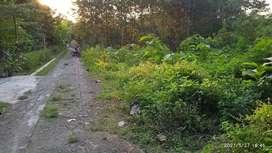 Tanah 910 Kalijirak Tasikmadu