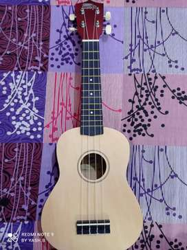 A brand new soprano ukelele of intern ..beautiful design and colour