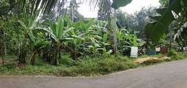 PLOT FOR SALE AT ANIKAD