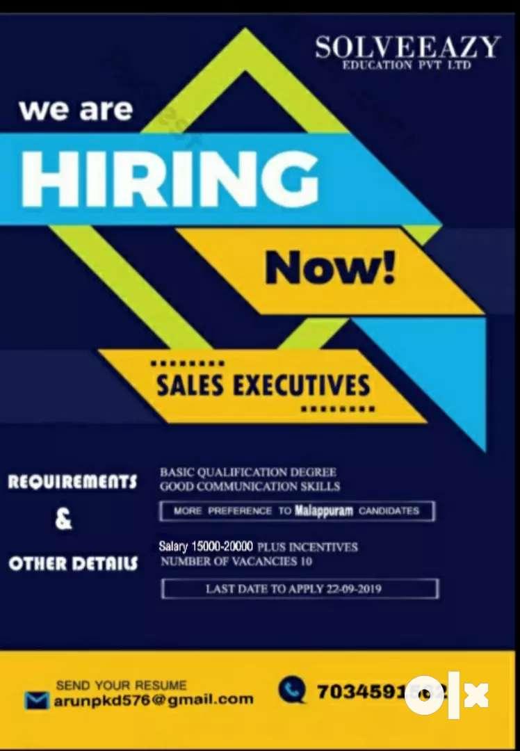 Sales executives 0