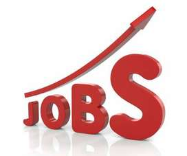 required candidates for operator and online work