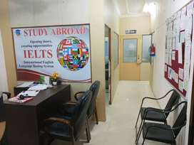 A senior IELTS trainer required