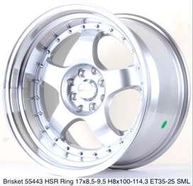 new modif BRISKET 55443 HSR R17X85/95 H8X100-114,3 ET35/25 SML