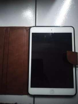 iPad mini WiFi only