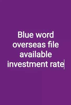 Blue word overseas investors rate file available good society