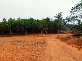 Tanah matang lokasi ideal
