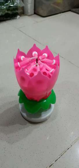 Flower  music   birthday. Candle
