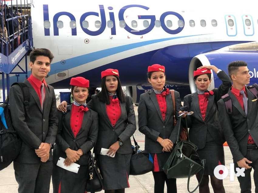 INDIGO Job Indigo Job Indigo Job  INDIGO Job INDIGO AIRLINES Job Vacan 0