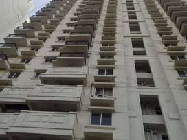 DLF New Town Heights in kakkanad , 3 bedroom flat for sale