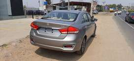 CIAZ HYBRID 6 MONTHS OLD SILVER GREY COLOUR