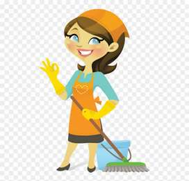 Boy or Girl required for Household work