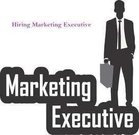 Marketing Excecutive