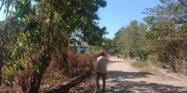 Tanah dijual digalesong cocok perumahan dan kavling serta gudang