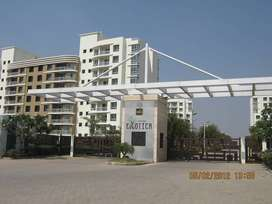 Available 2 BHK Spacious and Luxurious Flat in Wagholi