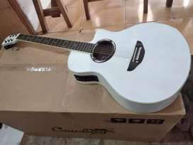 Gitar akustik elektrik new apx putih jreng