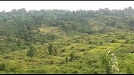 Tanah Kebun Kerjasama Pertanian