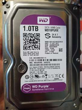 Hdd WD Purple 1TB