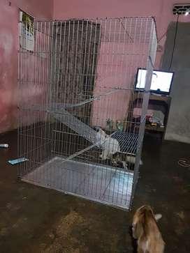 New kandang kucing tingkat 3