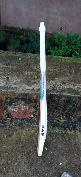 English willow cricket bat for tournament matches